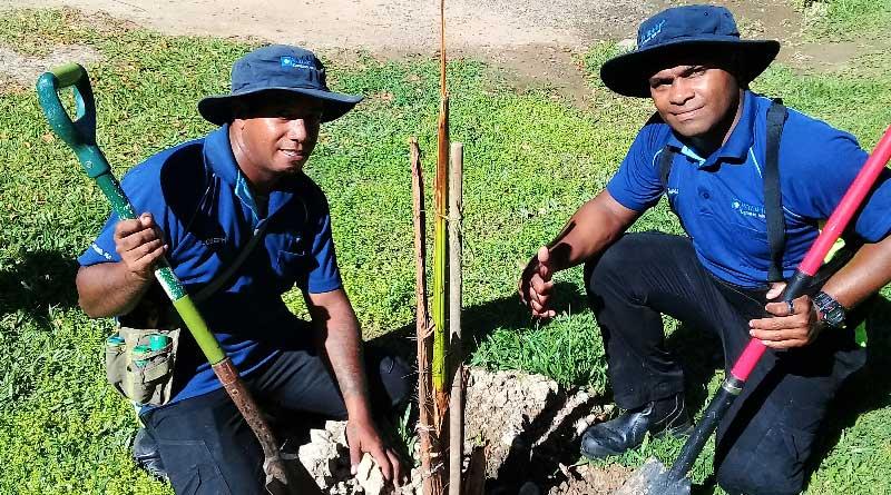 Club Wyndham Denarau Island Palm